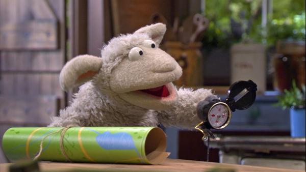 Wolle und Pferd wollen wandern gehen. Sie nehmen eine Karte und einen Kompass mit.   Rechte: NDR/Sesame Workshop