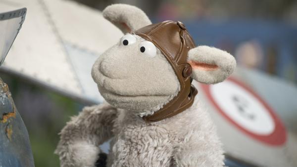 Ein Flugzeug zu bauen, ist aber auch kompliziert, stellt Wolle fest. | Rechte: NDR/Sesame Workshop