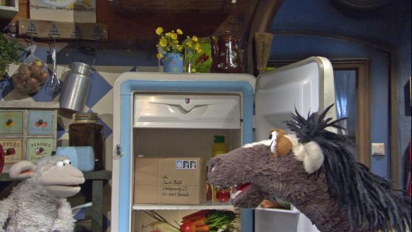 Oje, Pferd hat vergessen, Tante Hüflis Geburtstagsgeschenk rechtzeitig abzuschicken! | Rechte: NDR/Sesame Workshop