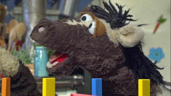 Pferd ärgert sich, weil Wolle alles besser kann als er. | Rechte: NDR/Sesame Workshop