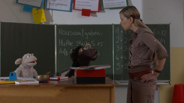 Die Lehrerin (Petra Frank) ist überrascht, Wolle und Pferd am Lehrertisch zu finden. | Rechte: NDR/Sesame Workshop