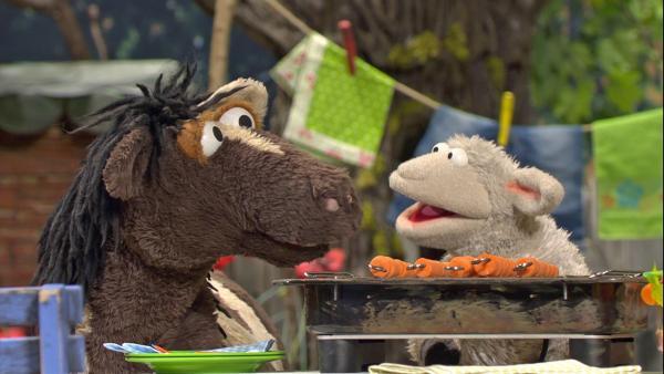 Pferd und Wolle haben schon Möhren auf den Grill gelegt, aber der funktioniert ausgerechnet jetzt nicht mehr. | Rechte: NDR/Sesame Workshop