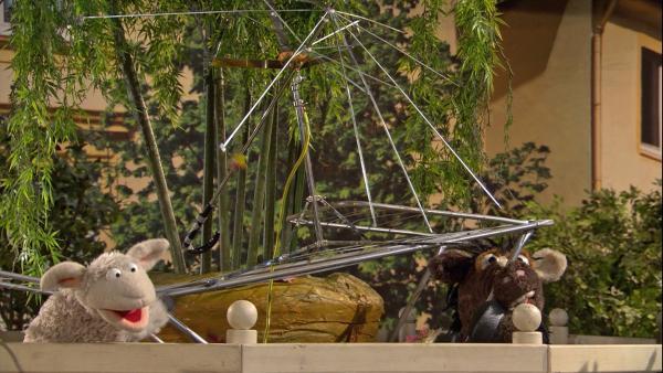 Wolle und Pferd stellen einen Blitzableiter auf, bevor es anfängt zu gewittern.   Rechte: NDR/Sesame Workshop