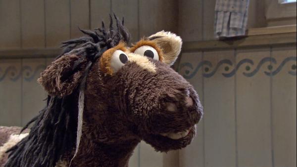 Pferd hat ein weißes Haar entdeckt. | Rechte: NDR/Sesame Workshop