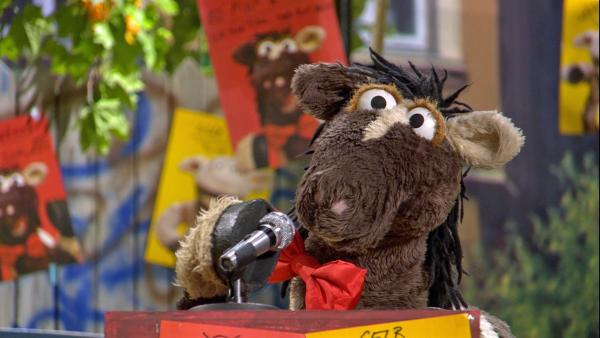Im Wahlkampf um die neue Farbe der Möhre tritt Pferd für Rot an. | Rechte: NDR/Sesame Workshop