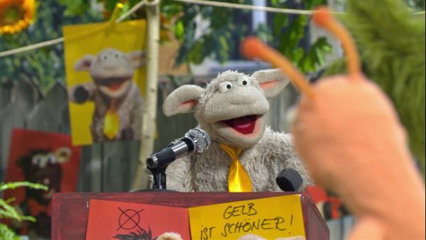 Wolle möchte die Möhre gelb streichen.   Rechte: NDR/Sesame Workshop