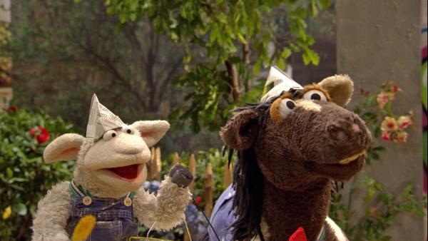Wolle und Pferd können sich nicht entscheiden, in welcher Farbe sie ihre Möhre streichen wollen.   Rechte: NDR/Sesame Workshop