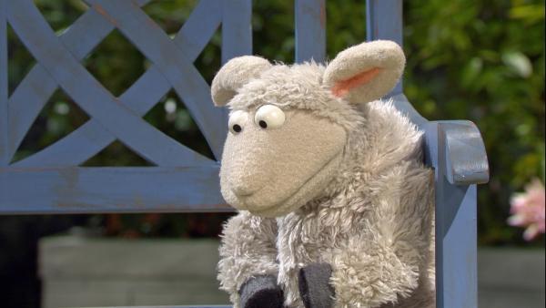 Wolle bekommt Post und ist danach plötzlich sehr traurig. | Rechte: NDR/Sesame Workshop