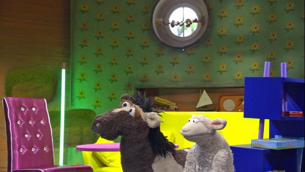 Die Möhre ist voller neuer Möbel. Doch ist jetzt wirklich alles schöner als vorher? | Rechte: NDR/Sesame Workshop