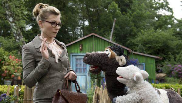 Frau Winkel mag keine Tiere. | Rechte: NDR/Sesame Workshop
