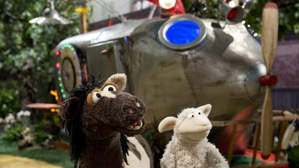 Wolle und Pferd gehen auf Zeitreise. | Rechte: NDR/Sesame Workshop
