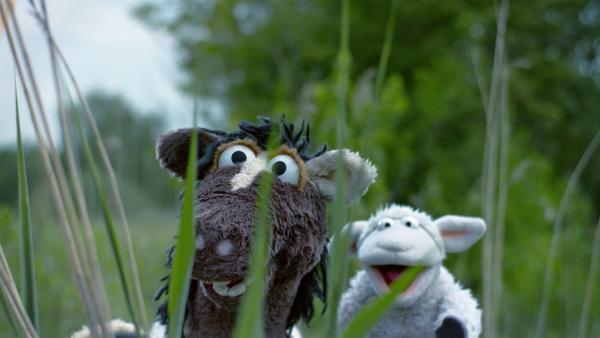 Wolle und Pferd entdecken das Wikingerdorf. | Rechte: NDR/Sesame Workshop