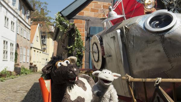 Wolle und Pferd sind im 19. Jahrhundert gelandet. | Rechte: NDR/Sesame Workshop