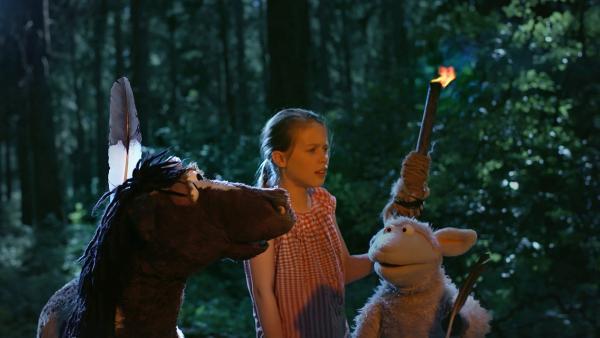 Pferd, Emma und Wolle sind im Wald der tausend Geräusche. | Rechte: NDR/Sesame Workshop