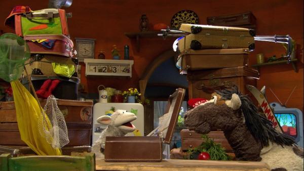 Wolle und Pferd wollen unbedingt verreisen. | Rechte: NDR/Sesame Workshop