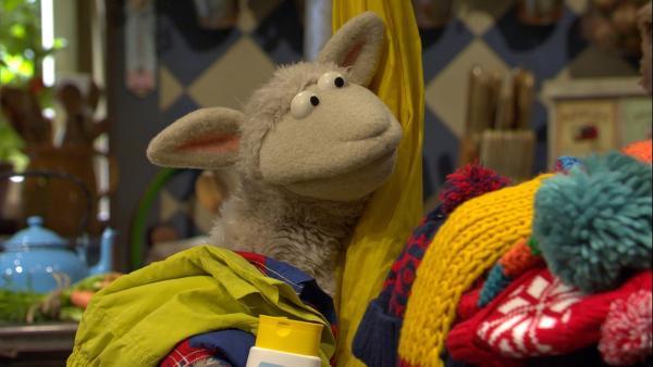 Wolle hat ziemlich viel Gepäck zusammengesucht. | Rechte: NDR/Sesame Workshop