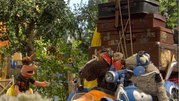 Finchen will ihren Freunden mit dem Gepäck helfen. | Rechte: NDR/Sesame Workshop