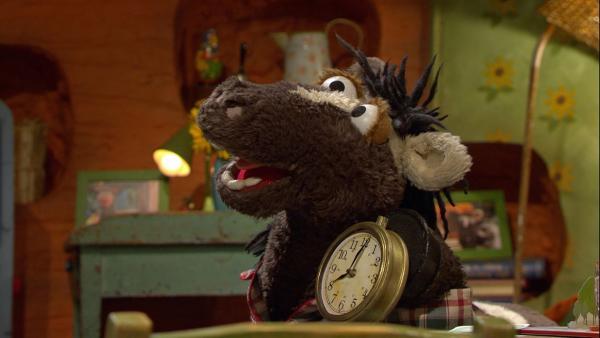 Pferd stellt sich immer die Zeit ein, die er gerade braucht. | Rechte: NDR/Sesame Workshop