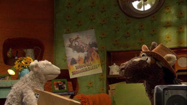 Pferd will so heißen wie sein Lieblingssänger. | Rechte: NDR/Sesame Workshop