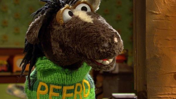 Mit diesem Pulli vergisst Pferd nie mehr, wie er heißt. | Rechte: NDR/Sesame Workshop