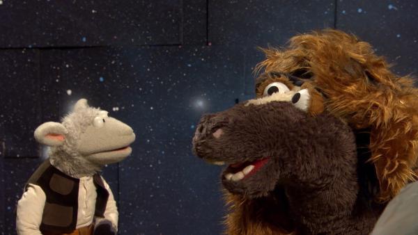 Woll-Solo und Pferd-Bacca in Aktion | Rechte: NDR/Sesame Workshop