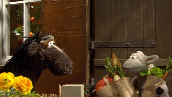 Wolle und Pferd können ihren Haustürenschlüssel nicht finden. | Rechte: NDR/Sesame Workshop