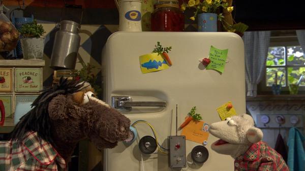 Wolle hat eine Alarmanlage gegen Einbrecher gebaut. | Rechte: NDR/Sesame Workshop