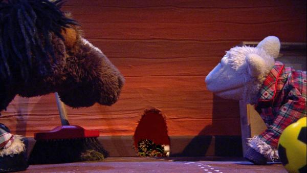 Wolle und Pferd entdecken, dass eine kleine Maus bei ihnen wohnt. | Rechte: NDR/Sesame Workshop