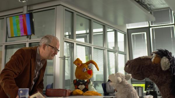 Wolle und Pferd beschweren sich bei der Zeitung. | Rechte: NDR/Sesame Workshop