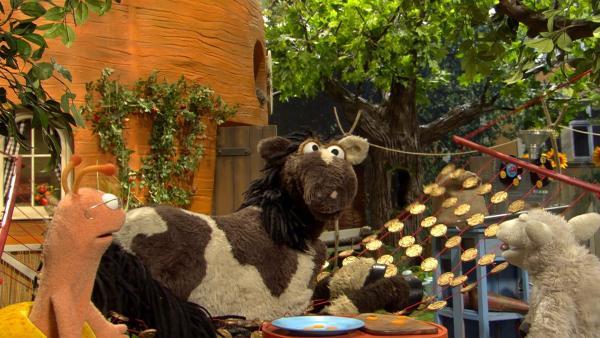 Finchen hat aus den Möhrentalern eine neue Hängematte gebastelt. | Rechte: NDR/Sesame Workshop