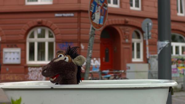 Mit seiner eingetauschten Badewanne fährt Pferd durch die Stadt.   Rechte: NDR/Sesame Workshop