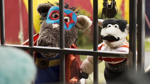 Als Zirkusartisten verkleidet wollen Wolle und Pferd Günni aus seiner Gefangenschaft befreien. | Rechte: NDR/Robert Naczynski