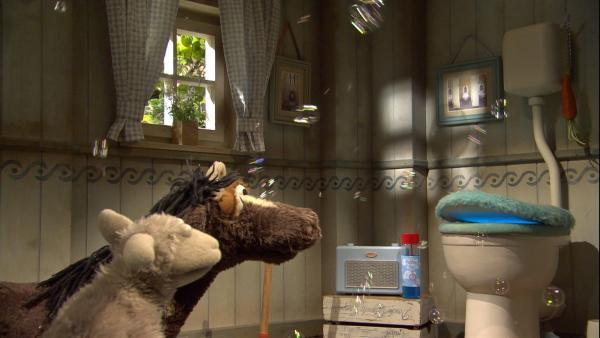 Wolle und Pferd wollen mit ihrem Freund Günni, dem sprechenden Klo, einen Ausflug zur Erfindermesse machen.   Rechte: NDR/Robert Naczynski