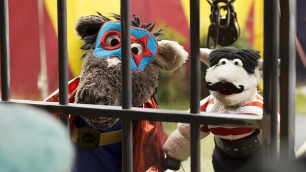 Als Zirkusartisten verkleidet wollen Wolle und Pferd Günni aus seiner Gefangenschaft befreien.   Rechte: NDR/Robert Naczynski