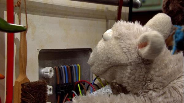 Wolle versucht verzweifelt den kaputten Herd zu reparieren.   Rechte: NDR/Sesame workshop