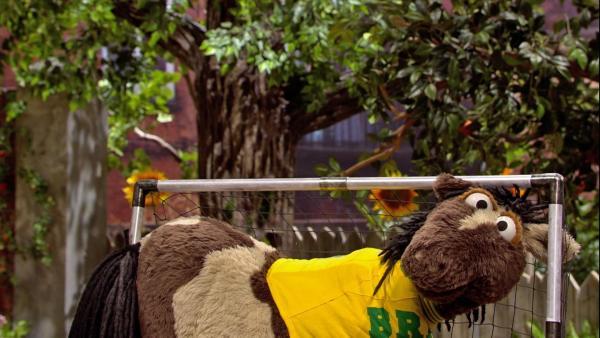 Pferd hält im Tor jeden Ball.   Rechte: NDR/Sesame workshop