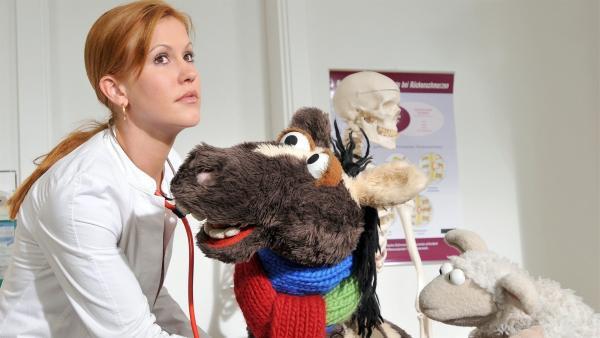 Pferd und Wolle sind krank und lassen sich von ihrer guten Freundin Wolke Hegenbarth untersuchen. | Rechte: NDR/Uwe Ernst