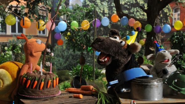 Finchen glaubt, dass Pferd und Wolle ihren Geburtstag vergessen haben - im Garten der Möhre erwartet sie eine Überraschung. | Rechte: NDR/UWE ERNST
