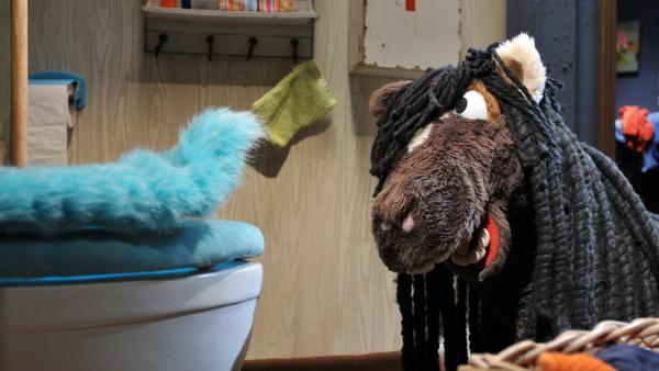 Pferd kommt gerade vom Friseur und spricht mit Günni (links) über seine neue Frisur. Auch Günni ist modisch auf der Höhe. | Rechte: NDR/UWE ERNST