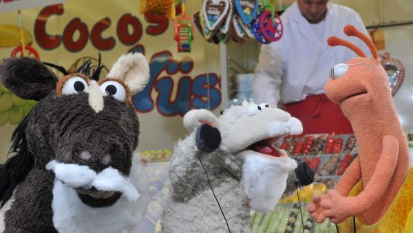 Finchen hat schlechte Laune. Deswegen gehen ihre Freunde mit ihr auf den Jahrmarkt. Aber nichts kann die kleine Schnecke aufheitern - kein Riesenrad, keine Zuckerwatte, kein Hau-den-Lukas... | Rechte: NDR/UWE ERNST