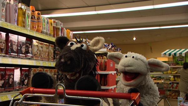 Wolle und Pferd sind begeistert und wollen sich ein Planschbecken kaufen. | Rechte: NDR/Studio Hamburg