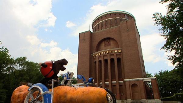 Wolle weiß, wo man auch tagsüber einen Sternenhimmel bestaunen kann: Im Planetarium. Und wer weiß, vielleicht sieht Pferd ja dort auch eine Sternschnuppe? | Rechte: NDR/Studio Hamburg