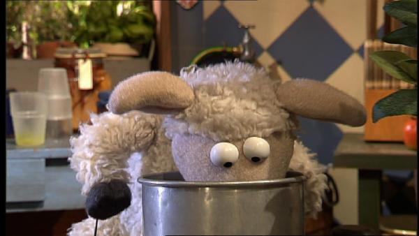 Oh nein! Pferd kann seine Kuschelmöhre nicht finden! Er und Wolle stellen die ganze Möhre auf den Kopf und suchen überall. | Rechte: NDR/Studio Hamburg