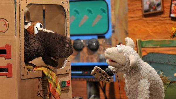 Wolle und Pferd spielen Fernsehen. | Rechte: NDR/UWE ERNST