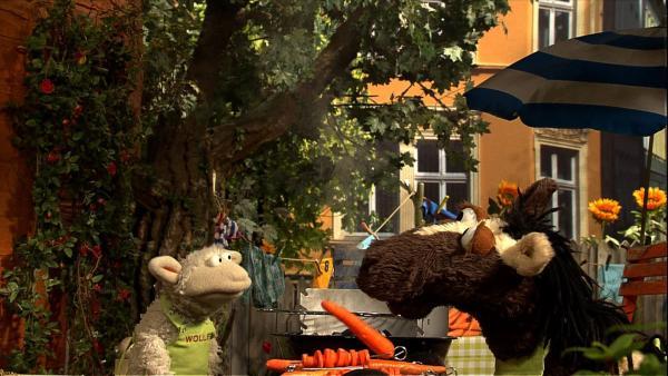 Juhuu, Möhrengrillen!! Wolle und Pferd wollen gerade loslegen, da donnert es und beginnt, in Strömen zu regnen. | Rechte: NDR/Studio Hamburg
