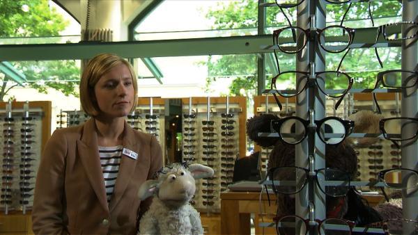 Wolle und Pferd auf der Suche nach einer passenden Brille für Pferd. | Rechte: NDR/Studio Hamburg