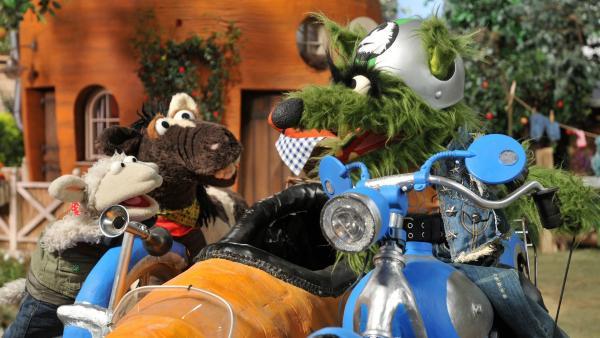 Pferd und Wolle sehen den verschlagenen Wolf mit ihrem Möhrtorrad. | Rechte: NDR/Uwe Ernst