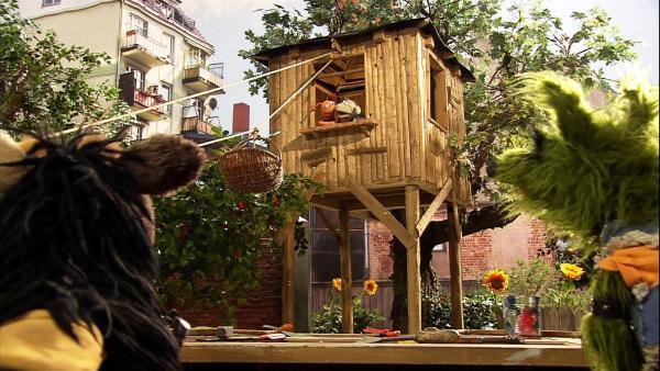 Pferd und Wolle bauen gerade ein Baumhaus, als Finchen ein großes Paket in die Möhre bringt. | Rechte: NDR/Studio Hamburg
