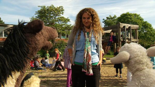 Günni erzählt Pferd und Wolle von einer Sprache, die man nur mit den Händen, Hufen oder Klauen sprechen kann. | Rechte: NDR/Studio Hamburg