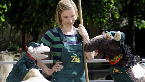 Im Zoo werden Wolle und Pferd nach langer Suche fündig. Eine Ziege soll es ihr Haustier sein. Wenn da nur nicht die viele Arbeit wäre: ausmisten, Stroh wechseln, füttern, Wasser holen... | Rechte: NDR/Uwe Ernst